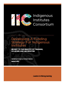 Developing a Funding Strategy for Indigenous Institutes – 2019 Report