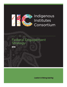 IIC Federal Engagement Strategy – 2019 Report