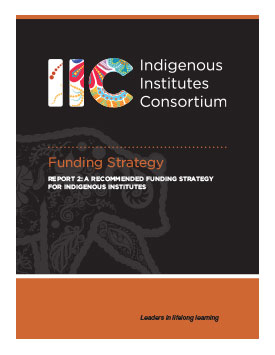 IIC Funding Strategy (Report 2)