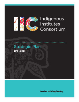 IIC Strategic Plan 2018 – 2021 Report